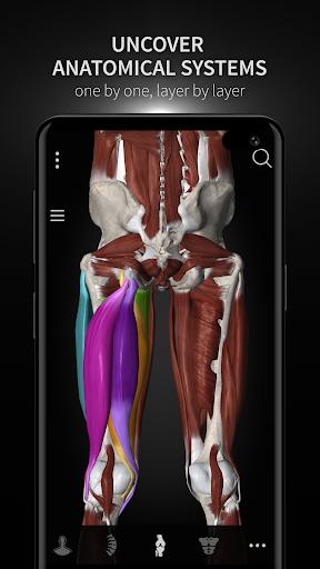 Anatomyka - 3D Human Anatomy Atlas 1.8.5 screenshots 8