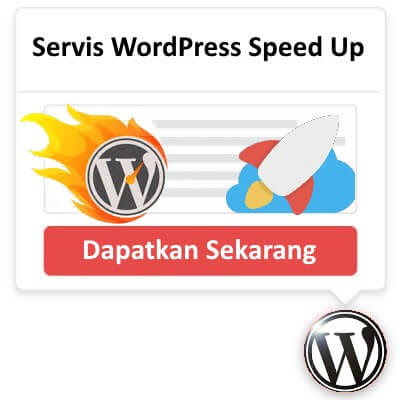 Servis WordPress Speed Up
