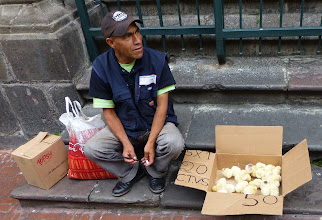 Photo: Selling live chicks