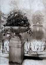 Photo: JArdin du Luxembourg, fuente de Médicis ( 6 arr) , 1898 . - EUGENE ATGET
