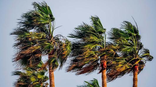 Previsión de fuertes rachas de viento este sábado en gran parte de la provincia