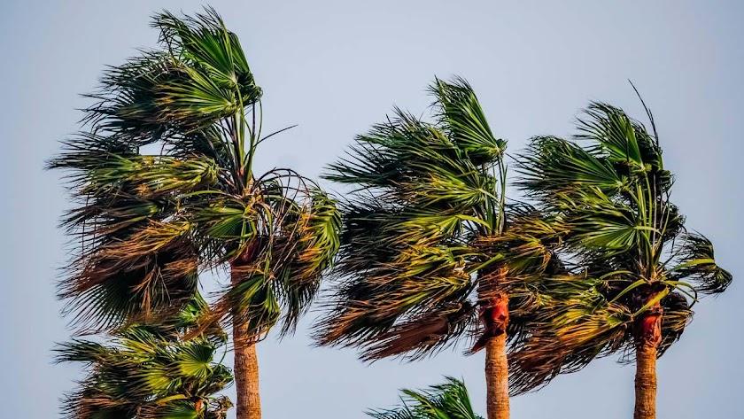 Los vientos pueden llegar a 90 km/h en parte de la provincia.