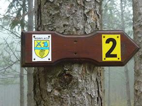 Photo: Würflacher Weg 2, gelb markiert, ansonsten ...