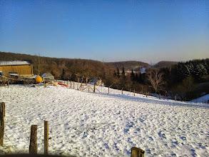 Photo: Winteranfang 2014: Im Gellingshagen am Tücking - Blick gen Osten.