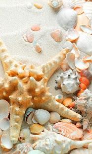 Sea Shells Beach LWP - náhled