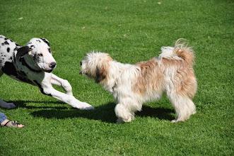 Photo: Wir rennen gemeinsam