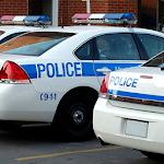Police Car Parking : Simulator Icon