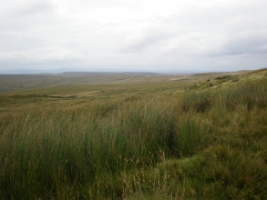 Photo: PW - From Great Shunner Fell to Tan Hill: over the moor