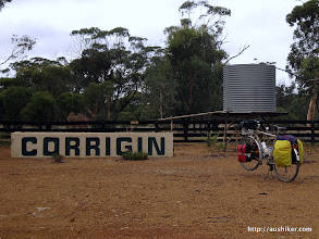 Photo: Corrigin - Home of the Dog in a Ute