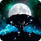 Night Scene Live Wallpaper