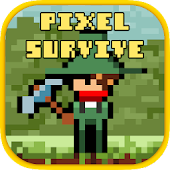 Pixel Survival Adventure