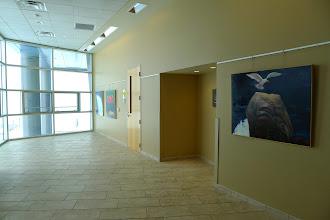 Photo: Joyce Koskenmaki's work