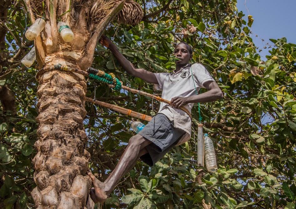 Praktische-tips-Gambia