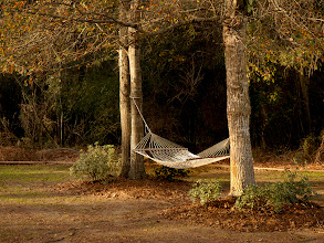 Photo: Relaxing hammock