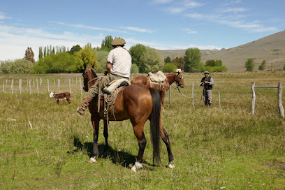 Genuine, authentic Patagonian Gauchos