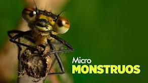 Micro Monsters With David Attenborough thumbnail