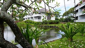Garden Island Home thumbnail