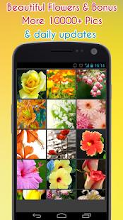 květina Tapeta - náhled
