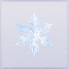 初心の雪花