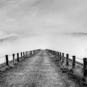 Into the Fog by Kevin Hart - Black & White Landscapes ( into the fog, kevin hart, black and white, fog, dam, weather, vermont, landscape, panorama, photography )