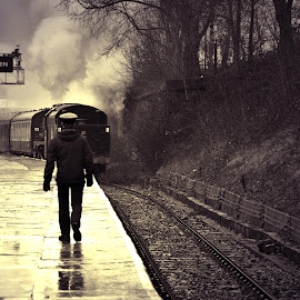 The  train  came  in  from  the rain by Gordon Simpson - Transportation Trains