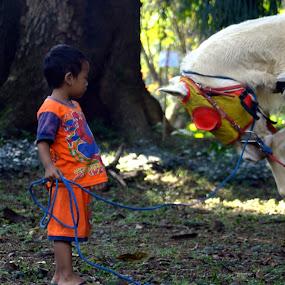 yes my majesty by Yosep Atmaja - Babies & Children Children Candids ( child, horse,  )