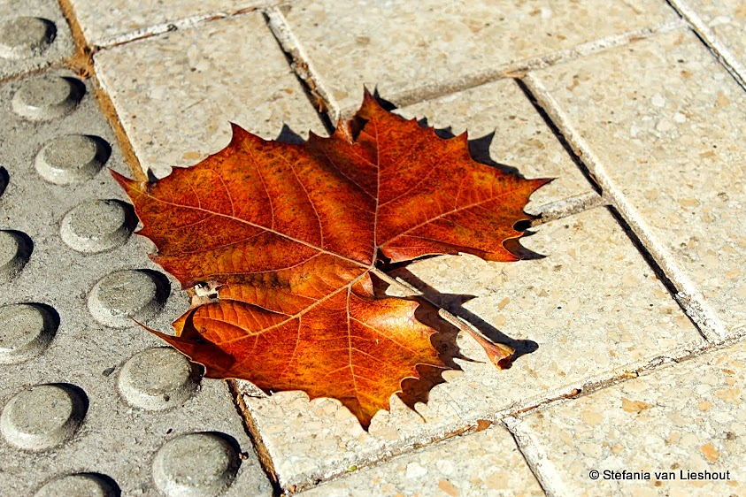 November weer Malaga