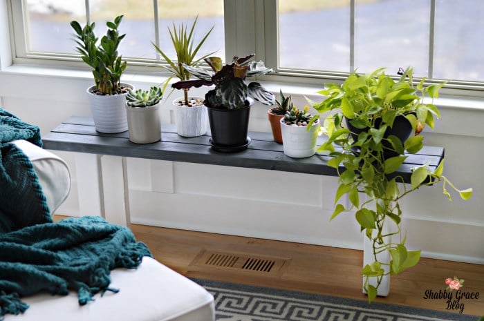 Plant Stand: These will help you make some money.