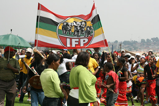 Government bailouts akin to 'throwing money into bottomless pit', says IFP