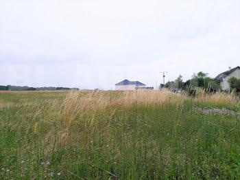 terrain à Avant-lès-Marcilly (10)
