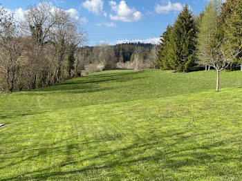 terrain à batir à Hauteville-Lompnes (01)