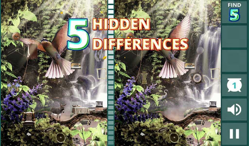 Hidden Difference: Aviary