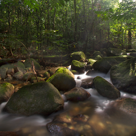 Close To Heaven by Steven De Siow - Landscapes Forests ( forest, rocks, waterscape, cascade, landscape,  )