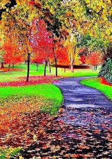 New Autumn Wallpaper - náhled