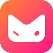 Mesh: Chat Video Casuale