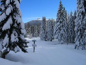 Photo: Sicht auf den Arber von der Chamer-Hütte