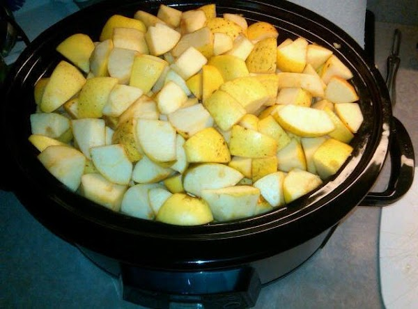 """Wash apples.  Core apples and cut into 2"""" chunks. Add water, cinnamon, nutmeg,..."""