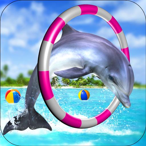 Dolphin Fun Game