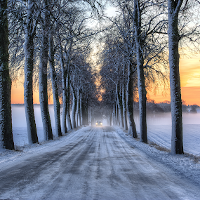 Where Roads Have No Name II by Manu Heiskanen - Uncategorized All Uncategorized ( car, pointofview, street, winterroad, symmetri, assymetry, alle, paulinawolekpardon, lights, winter, sunset, ice, trees, symmetry )