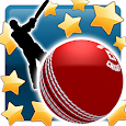 New Star: Cricket icon