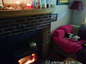 Photo: When the day comes cooler, grateful for a fire and candles and a wee dog.