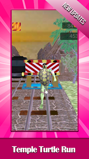 Temple Turtle Run