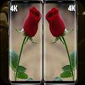 Romantic Flowers Wallpaper 4k icon