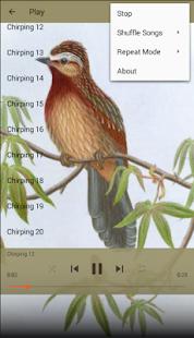 Birdsong Thrush - náhled