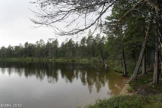 Photo: Kotkataipaleella. Lounaispuolen ranta. 5.8.2010