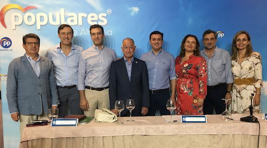 """Amat acusa al PSOE de """"machacar"""" a Almería desde el Gobierno"""