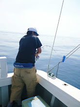 Photo: ・・・ん? ジグが沈まない。 グイーーン! ラインが横に出ていきます!