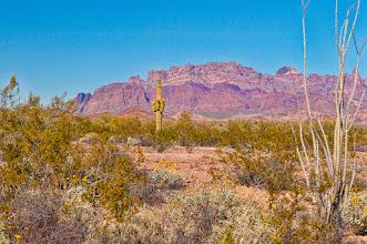 Photo: On King Road deep inside Kofa (King of Arizona) NWR