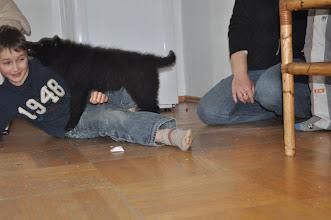 Photo: Bilder vom 18.11.12 mit 7 wochen und 3 Tagen