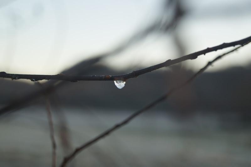 Una lacrima ghiacciata di Lipalipa